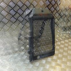 Накладка радиатора